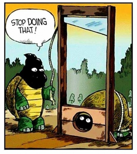 funny-turtle-head-stop-doing-that-guillotine-comic-pics